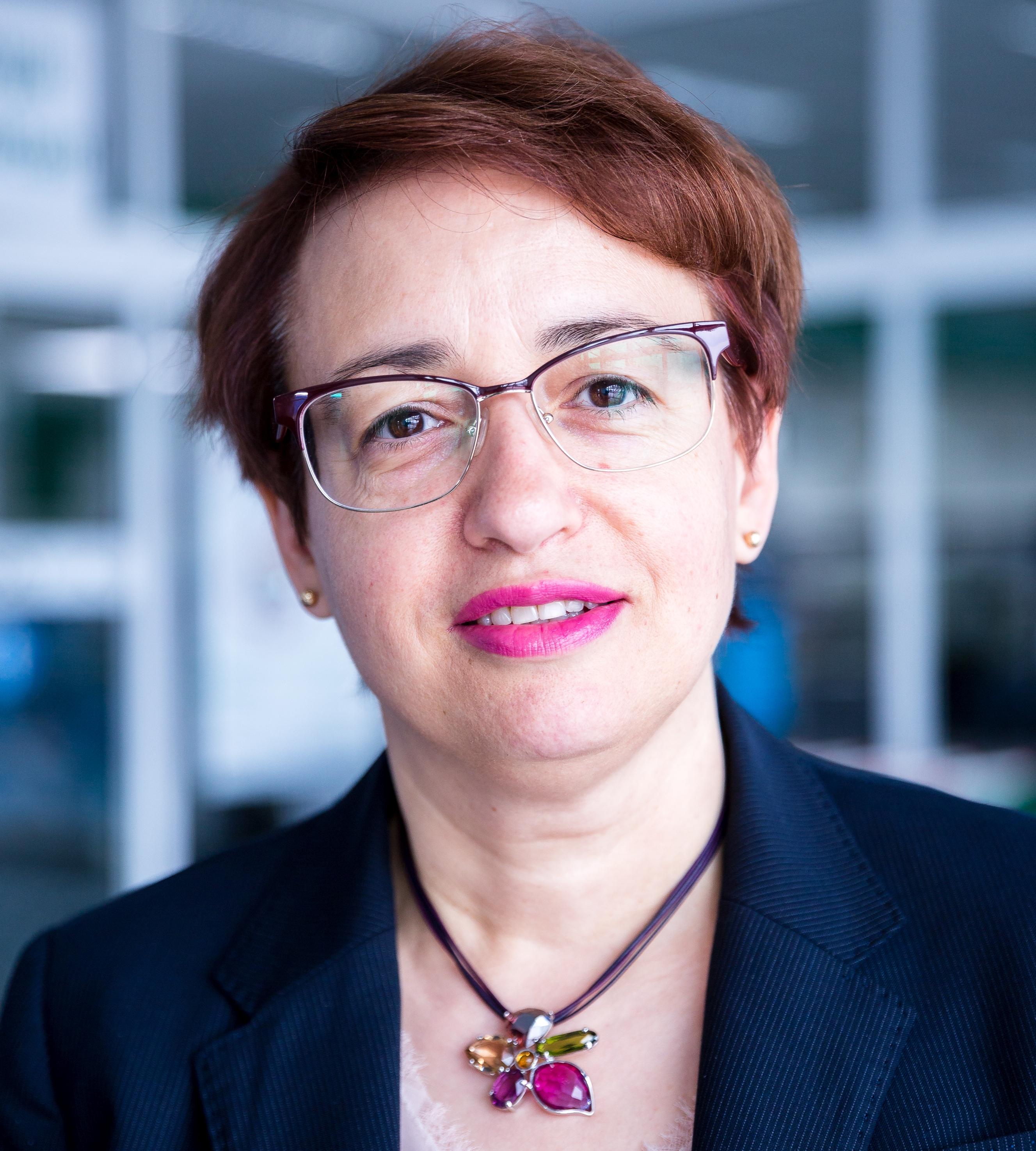 Dimitrova Dessislava, 365 üzleti történet