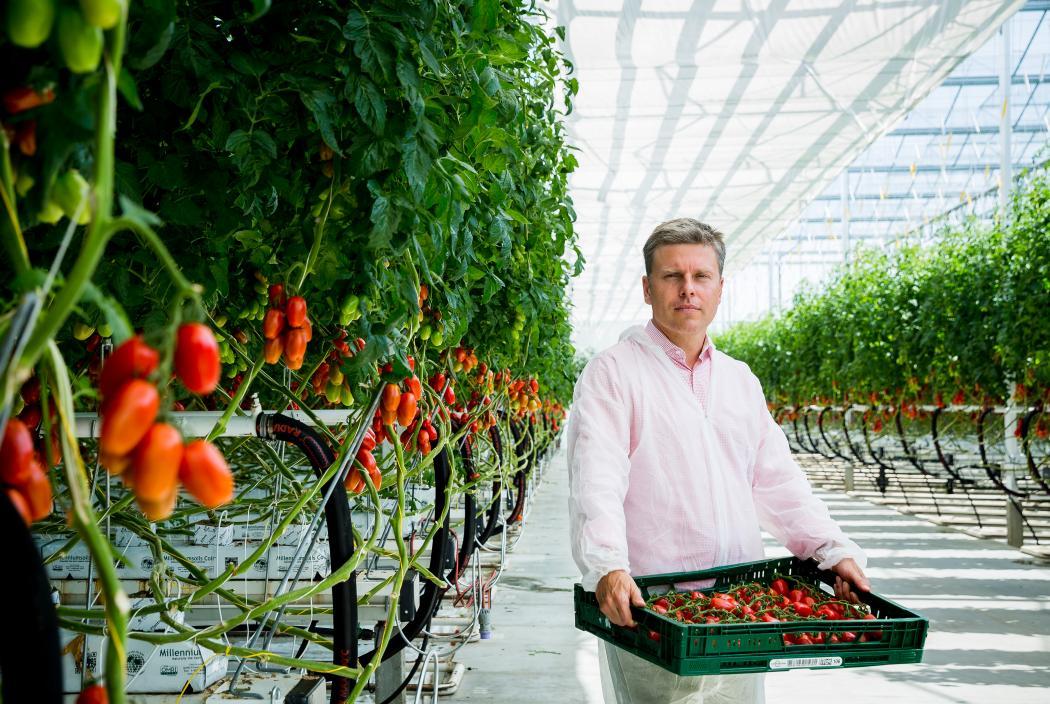 High-tech kertészetre váltotta a multi világot